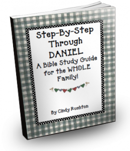 Step-by-Step through Daniel