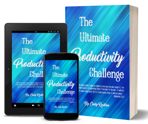 Ultimate Productivity Challenge DIY Set PLUS Personal Coaching